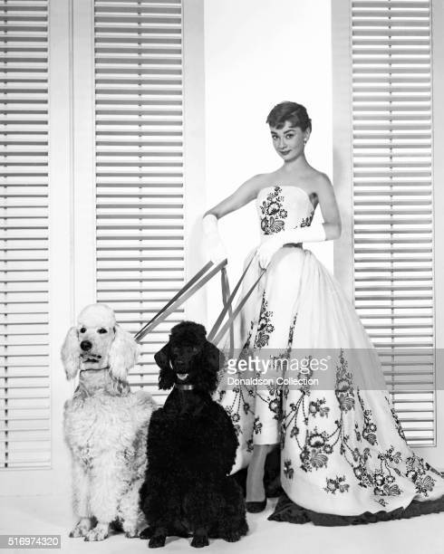 Actress Audrey Hepburn poses for a publicity still for the Paramount Pictures film 'Sabrina' in 1954 in Los Angeles California