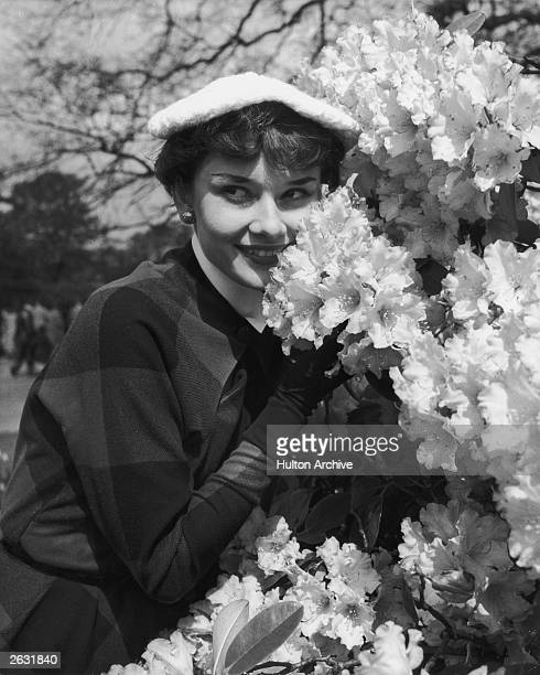 Actress Audrey Hepburn relaxes in Kew Gardens after a strenuous season in the London revue 'Sauce Piquante' 13th May 1950 Picture Post 5035 We Take A...