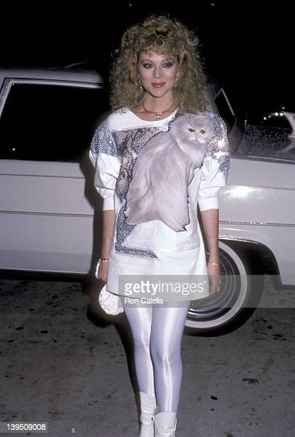 Actress Audrey Landers attends 'A Chorus Line' Century City Premiere on December 2 1985 at Plitt's Century Plaza Theatres in Century City California