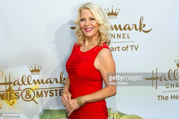 Actress Barbara Niven arrives for the 2017 Summer TCA Tour Hallmark Channel And Hallmark Movies And Mysteries on July 27 2017 in Beverly Hills...