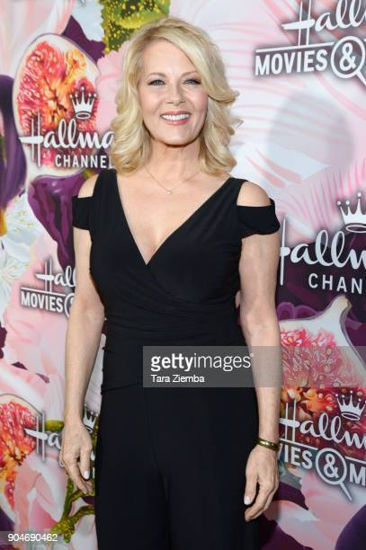 Actress Barbara Niven attends Hallmark Channel And Hallmark Movies and Mysteries Winter 2018 TCA Press Tour at Tournament House on January 13 2018 in...