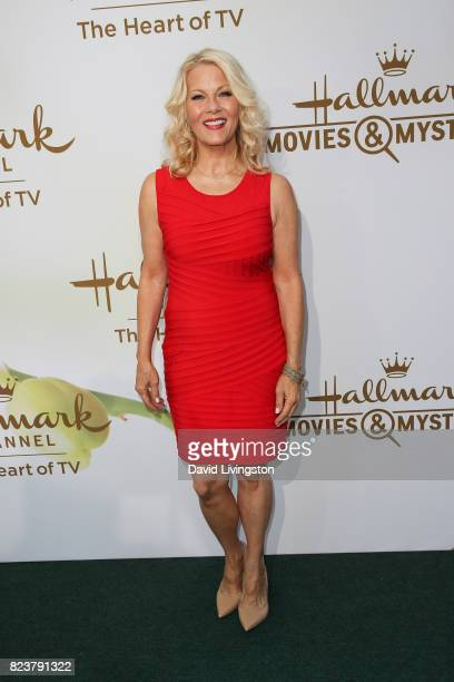 Actress Barbara Niven attends the Hallmark Channel and Hallmark Movies and Mysteries 2017 Summer TCA Tour on July 27 2017 in Beverly Hills California