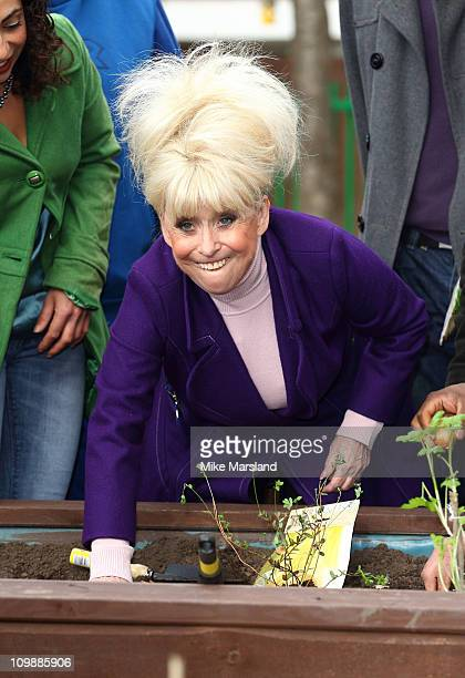 Actress Barbara Windsor helps volunteers to launch the annual Big Lunch at Keddlestone Walk Community Centre on March 9 2011 in London England