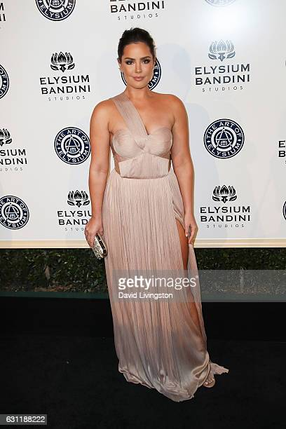 Actress Beau Dunn arrives at The Art of Elysium presents Stevie Wonder's HEAVEN celebrating the 10th Anniversary at Red Studios on January 7 2017 in...