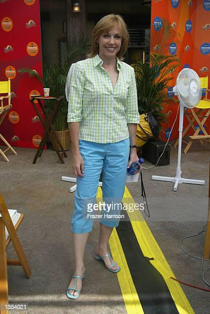 Actress Bess Armstrong of the ABC network show That Was Then attends the ABC Primetime Preview Weekend on August 25 2002 at Disney's California Park...