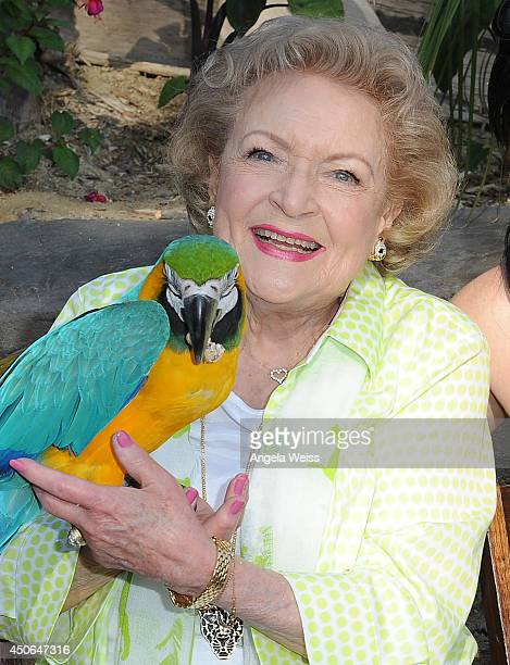 Actress Betty White attends the Greater Los Angeles Zoo Association's 44th Annual Beastly Ball at Los Angeles Zoo on June 14, 2014 in Los Angeles,...