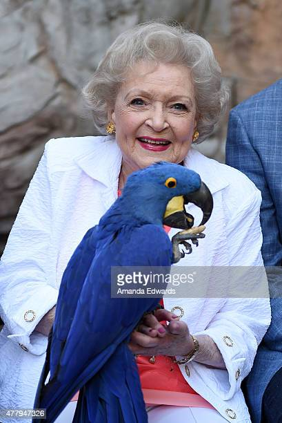 Actress Betty White attends The Greater Los Angeles Zoo Association's 45th Annual Beastly Ball at the Los Angeles Zoo on June 20, 2015 in Los...