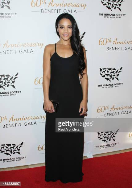 Actress Bianca Lawson attends the Humane Society Of The United States 60th Anniversary Benefit Gala at The Beverly Hilton Hotel on March 29 2014 in...