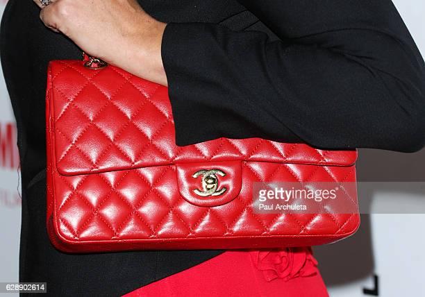Actress Bijou Phillips Handbag Detail attends the 32nd annual IDA Documentary Awards at Paramount Studios on December 9 2016 in Hollywood California