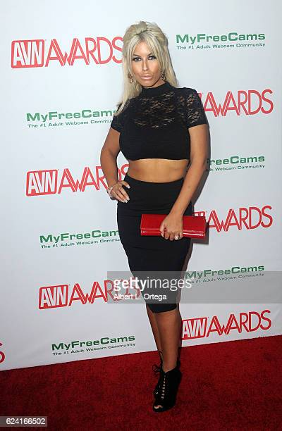Actress Bridgette B. Arrives for the 2017 AVN Awards Nomination Party held at Avalon on November 17, 2016 in Hollywood, California.