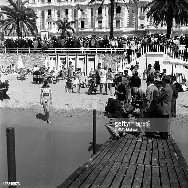 Actress Brigitte Bardot poses for photographers in bikini on the beach under the Carlton Hotel during the 6th Cannes Film Festival on April 1953 in...