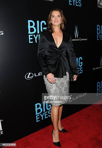 Actress Brooke Shields attends Big Eyes New York Premiere at Museum of Modern Art on December 15 2014 in New York City