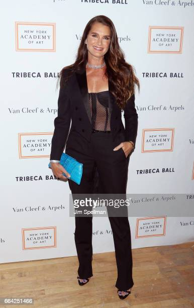 Actress Brooke Shields attends the 2017 TriBeCa Ball at The New York Academy of Art on April 3 2017 in New York City