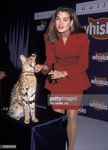 Actress Brooke Shields attends the 'Gallery Whiskas' Celebrity Cat Art Opening Night Exhibition to Benefit the ASPCA on October 27 1992 at Grand...