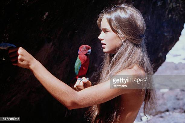 Actress Brooke Shields in the 1980 film The Blue Lagoon directed by Randal Kleiser While making the movie Brooke Shields needed to have her hair...