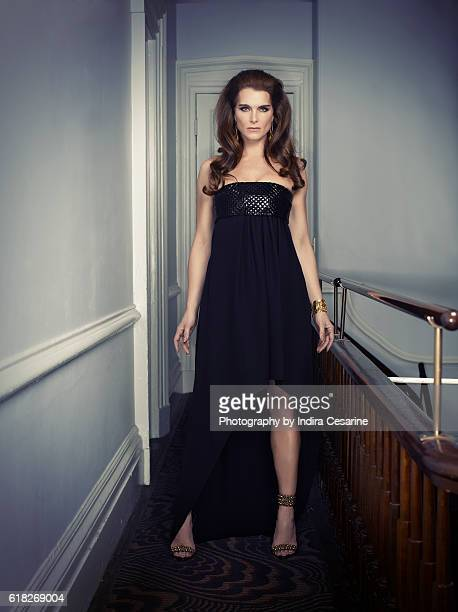 Actress Brooke Shields is photographed for The Untitled Magazine on February 4 2014 in New York City PUBLISHED IMAGE CREDIT MUST READ Indira...