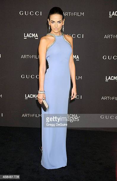 Actress Camilla Belle attends the 2014 LACMA Art Film Gala Honoring Barbara Kruger And Quentin Tarantino Presented By Gucci at LACMA on November 1...