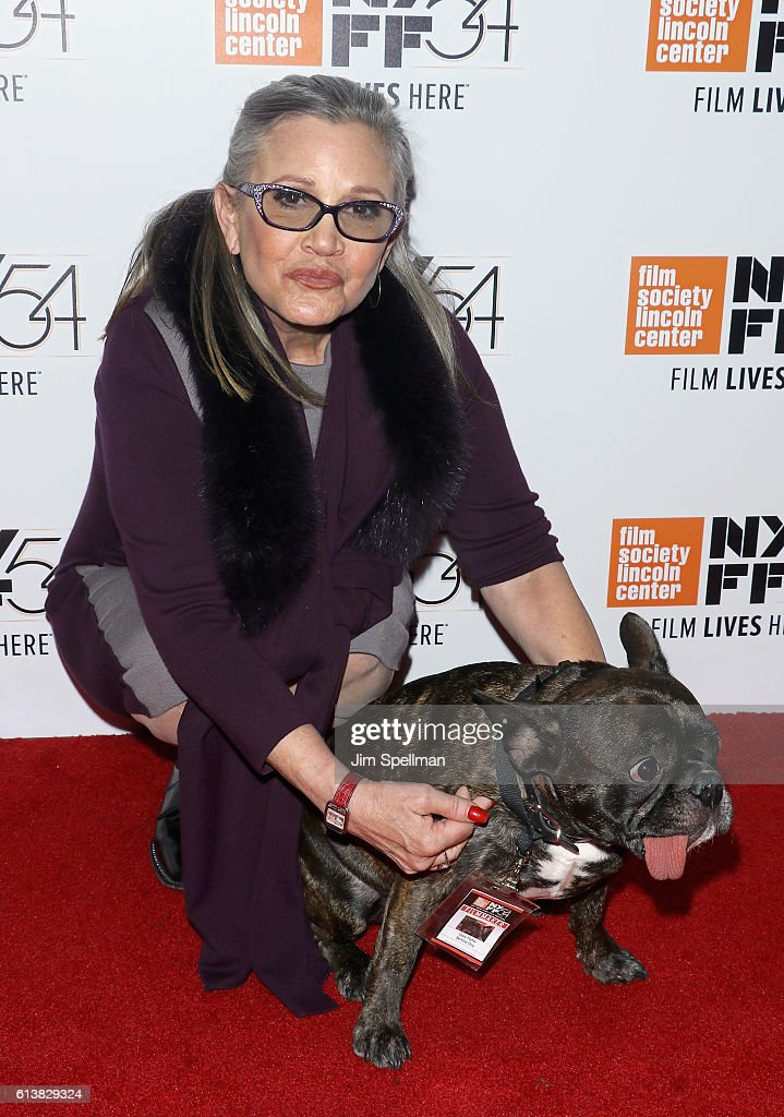 Actress Carrie Fisher and her french bulldog Gary attend the 54th New York Film Festival 'Bright Lights' screening at Alice Tully Hall on October 10, 2016 in New York City.