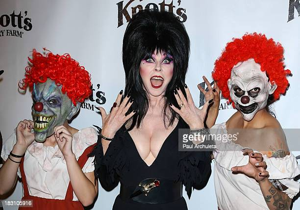 Actress Cassandra Peterson AKA Elvira attends the VIP opening of Knott's Scary Farm HAUNT at Knott's Berry Farm on October 3 2013 in Buena Park...