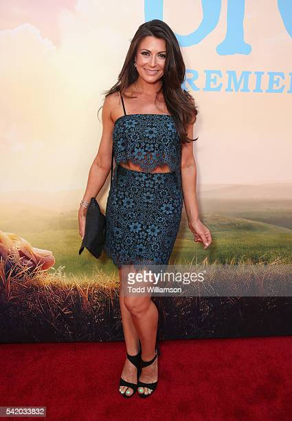Actress Cerina Vincent attends Disney's The BFG premiere at the El Capitan Theatre on June 21 2016 in Hollywood California