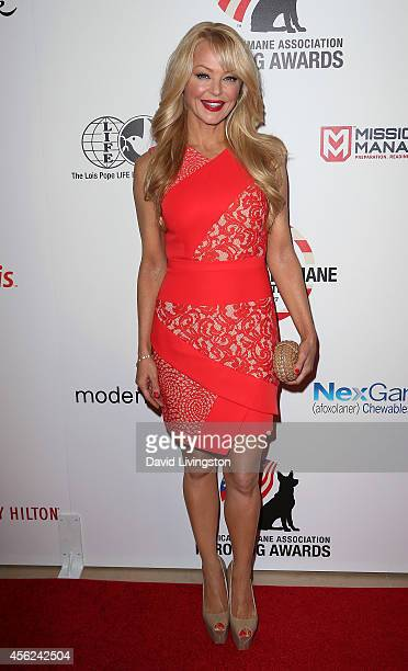 Actress Charlotte Ross attends the 4th Annual American Humane Association Hero Dog Awards at The Beverly Hilton Hotel on September 27 2014 in Beverly...