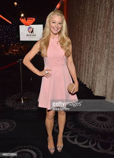 Actress Charlotte Ross attends the American Humane Association's 5th Annual Hero Dog Awards 2015 at The Beverly Hilton Hotel on September 19 2015 in...