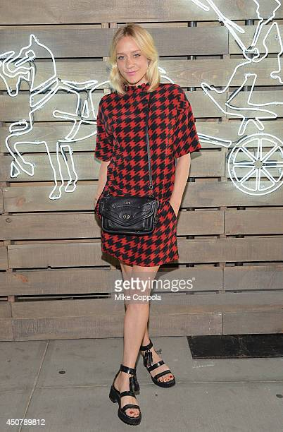 Actress Chloe Sevigny attends the 2014 Summer Party presented by Coach and Friends Of The Highline at The Highline on June 17 2014 in New York City