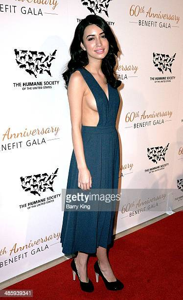 Actress Christian Serratos attends the Humane Society Of The United States 60th Anniversary Benefit Gala on March 29 2014 at The Beverly Hilton Hotel...