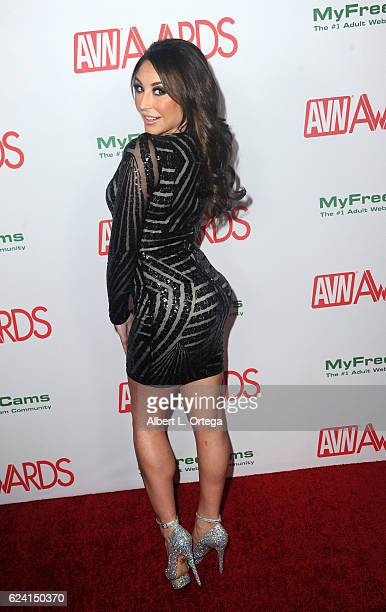 Actress Christiana Cinn arrives for the 2017 AVN Awards Nomination Party held at Avalon on November 17 2016 in Hollywood California
