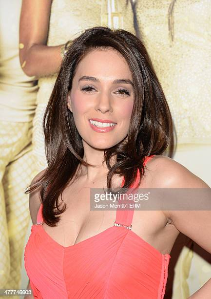 Actress Christina DeRosa attends the premiere Of Tyler Perry's The Single Moms Club at ArcLight Cinemas Cinerama Dome on March 10 2014 in Hollywood...