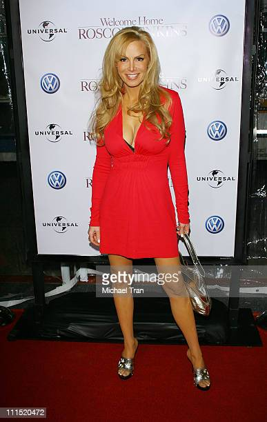 Actress Cindy Margolis arrives at the Los Angeles premiere of Welcome Home Roscoe Jenkins held at the Grauman's Chinese on January 28 2008 in...