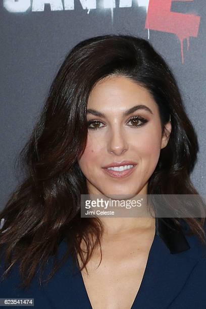 Actress Cristina Rosato attends the New York Premiere of Broad Green Pictures and Miramax's Bad Santa 2 at AMC Loews Lincoln Square on November 15...