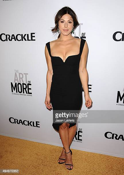 Actress Cristina Rosato attends the premiere of The Art of More at Sony Pictures Studios on October 29 2015 in Culver City California