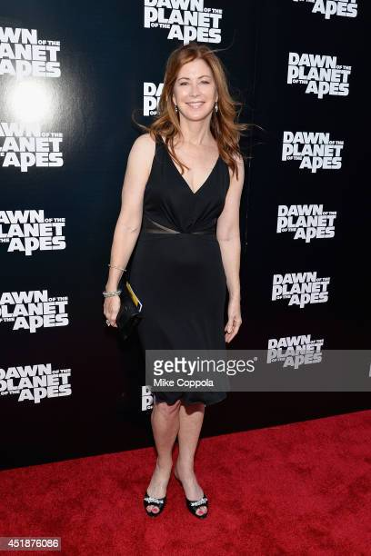 Actress Dana Delany attends the Dawn Of The Planets Of The Apes premiere at Williamsburg Cinemas on July 8 2014 in New York City