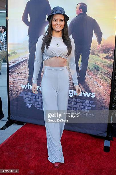 Actress Danica McKellar arrives at the Los Angeles premiere of Where Hope Grows at ArcLight Cinemas on May 4 2015 in Hollywood California