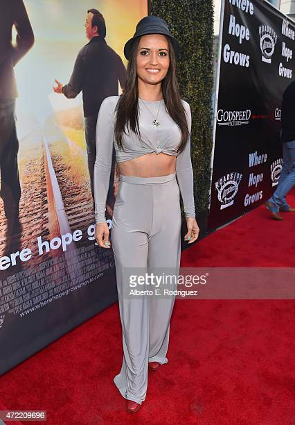 Actress Danica McKellar attends the premiere of Roadside Attractions' Godspeed Pictures' Where Hope Grows at The ArcLight Cinemas on May 4 2015 in...