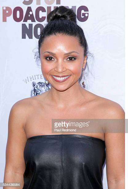 Actress Danielle Nicolet attends 2016 Stop Poaching Now at Ago Restaurant on May 25, 2016 in West Hollywood, California.