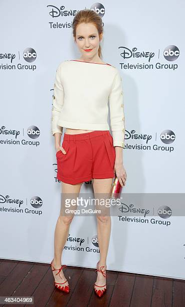 Actress Darby Stanchfield arrives at the ABC/Disney TCA Winter Press Tour party at The Langham Huntington Hotel and Spa on January 17 2014 in...
