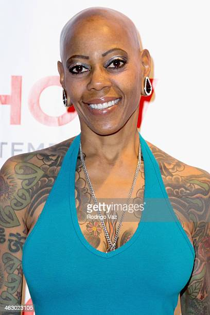 Actress Debra Wilson attends the LA Art Show 2014 Opening Night Premiere Party at Los Angeles Convention Center on January 15 2014 in Los Angeles...