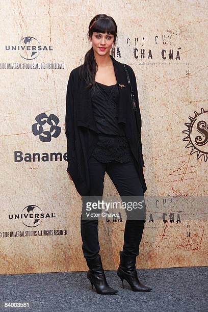 Actress Diana Garcia attends the premiere of Rudo y Cursi at the Teatro Metropolitan on December 10 2008 in Mexico City