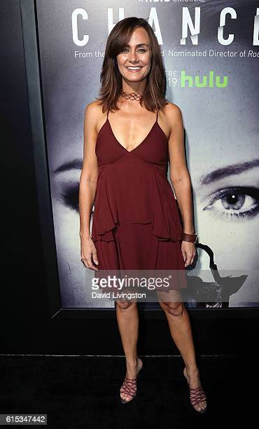 Actress Diane Farr attends the premiere of Hulu's 'Chance' at Harmony Gold Theatre on October 17 2016 in Los Angeles California