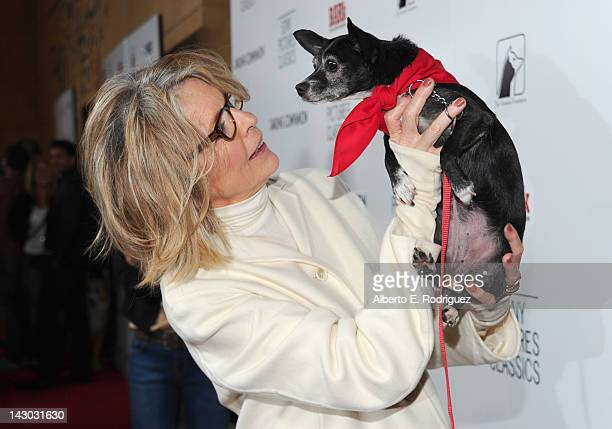 Actress Diane Keaton attends the Los Angeles premiere of Sony Pictures Classics' Darling Companion at the Egyptian Theatre on April 17 2012 in...
