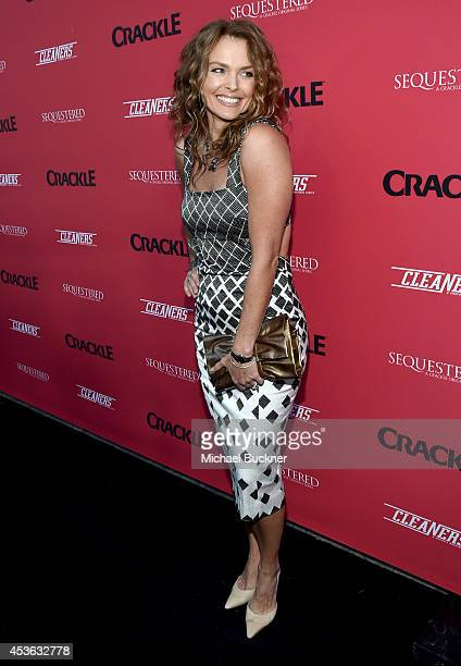 Actress Dina Meyer attends Crackle Presents Summer Premieres Event for originals Sequestered and Cleaners at 1 OAK on August 14 2014 in West...