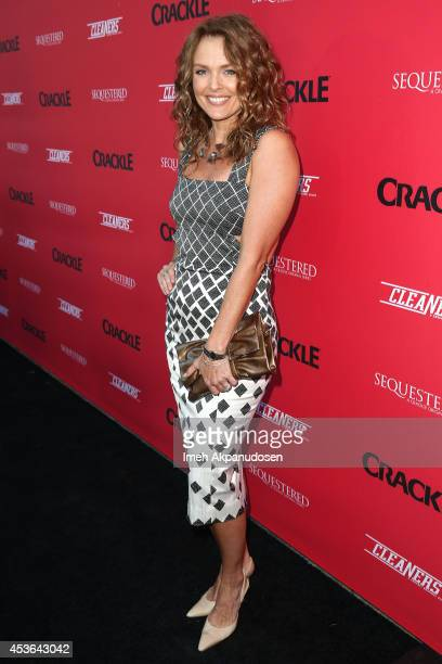 Actress Dina Meyer attends Crackle's Summer Premieres Event celebrating the launch of 'Sequestered' And 'Cleaners' at 1 OAK on August 14 2014 in West...