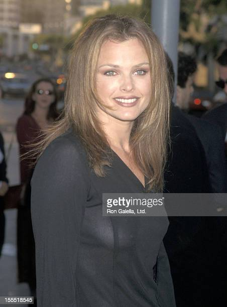 Actress Dina Meyer attends the Dragonheart Westwood Premiere on May 28 1996 at Mann Village Theatre in Westwood California