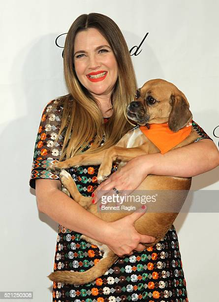 Actress Drew Barrymore attends the 19th Annual ASPCA Bergh Ball at The Plaza Hotel on April 14 2016 in New York City