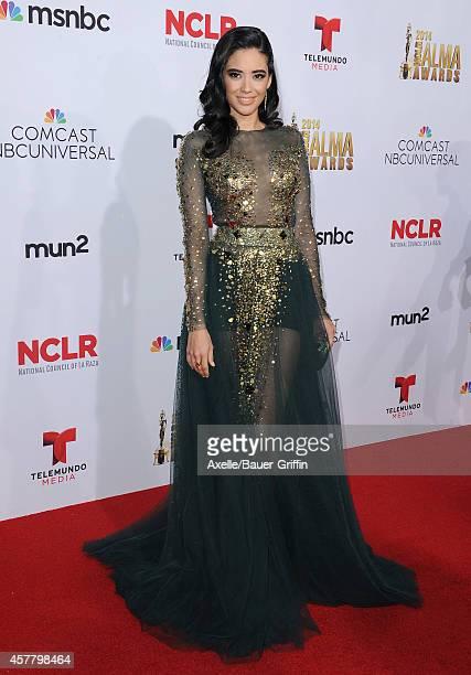 Actress Edy Ganem arrives at the 2014 NCLR ALMA Awards at Pasadena Civic Auditorium on October 10 2014 in Pasadena California
