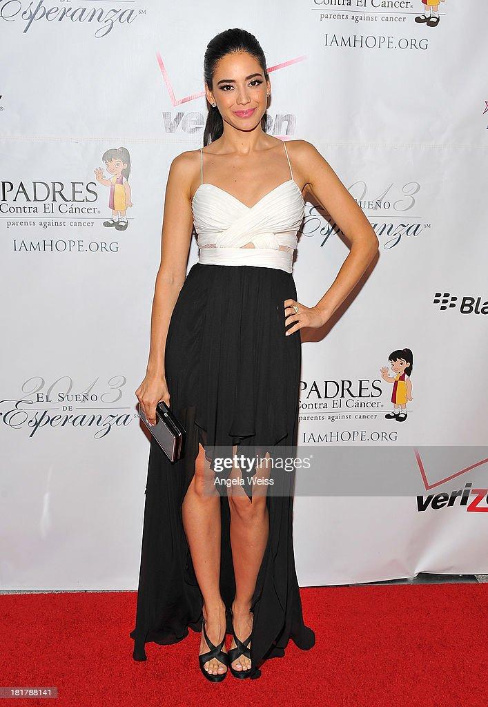 Actress Edy Ganem arrives at the Padres Contra El Cancer 13th annual 'El Sueno de Esperanza' gala on September 24, 2013 in Los Angeles, California.