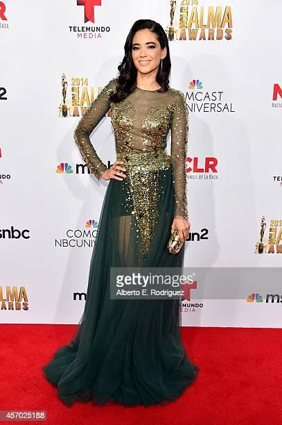 Actress Edy Ganem attends the 2014 NCLR ALMA Awards at the Pasadena Civic Auditorium on October 10 2014 in Pasadena California