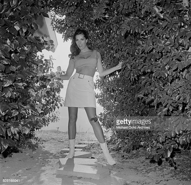 Actress Edy Williams poses at home in Los AngelesCA